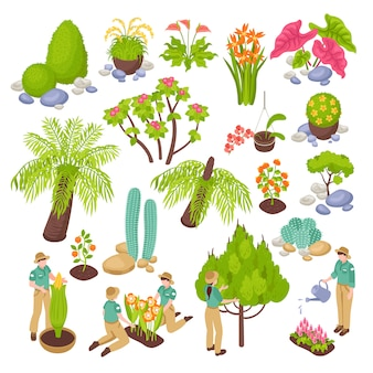Isometric botanical garden greenhouse set with isolated s of various plants trees and flowers with people