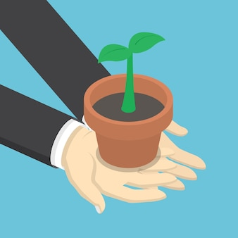 Isometric businessman holding little plant in hands