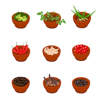 Isometric and cartoon style flavorful spices