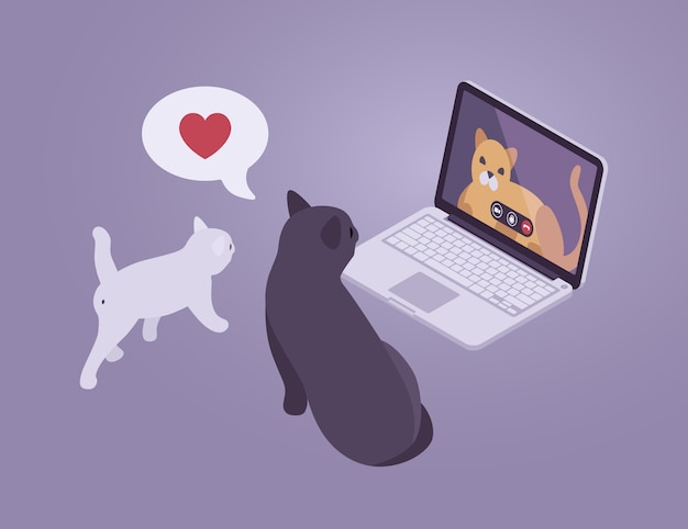 Isometric cats internet conversation