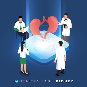 Isometric concept  lab via doctor analysis medical healthy about kidney. teamwork education of science.  illustrate.