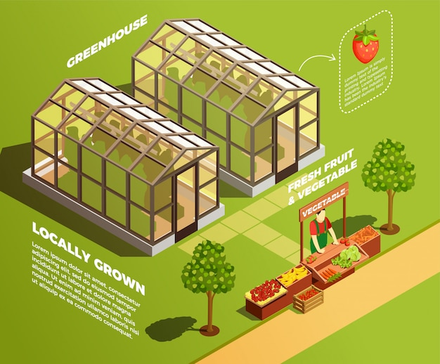 Isometric farm background