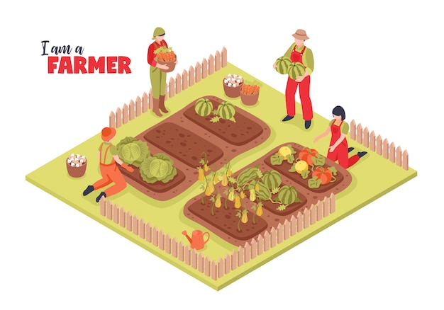 Isometric farm and farmers illustration