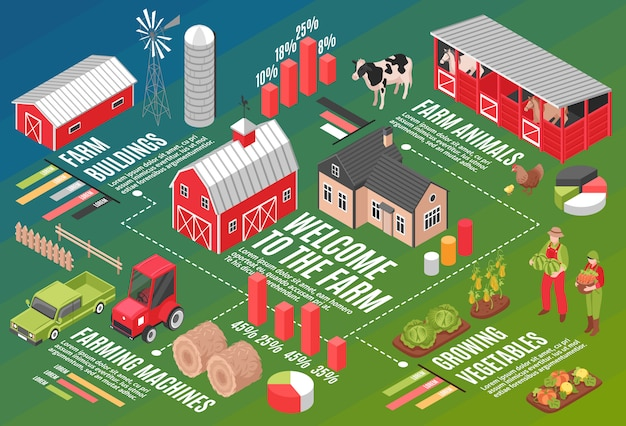 Isometric farm horizontal flowchart composition with infographic symbols graph icons editable text captions and farmstead images