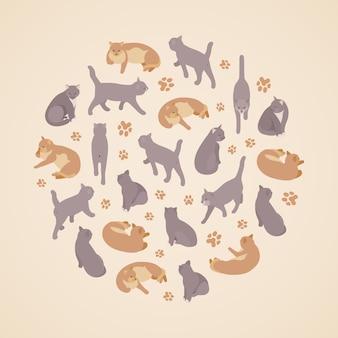 Isometric flat cats set
