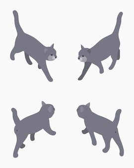 Isometric gray walking cat.