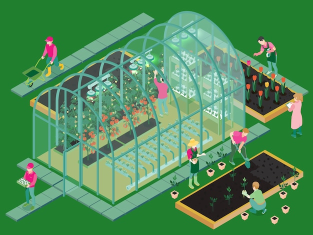 Isometric greenhouse illustration