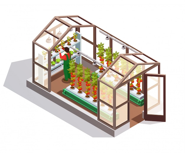 Isometric greenhouse with glass walls