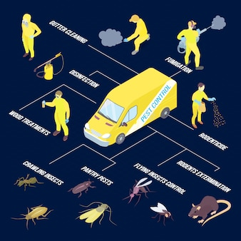 Isometric infographics with various pests and methods of disinfection 3d vector illustration