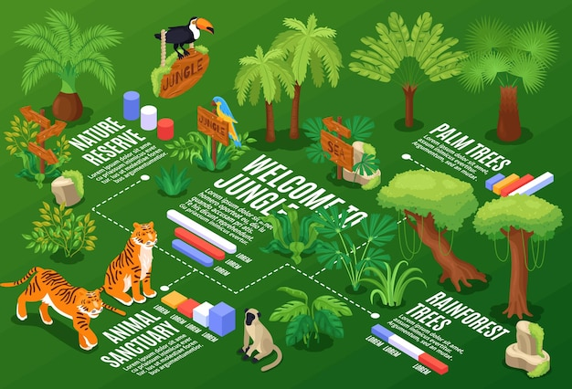 이국적인 식물과 야생 동물이있는 순서도 그래프와 텍스트 캡션이있는 아이소 메트릭 정글 수평 구성