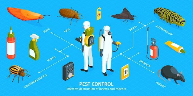Isometric pest control infographic with editable text captions workers in chemical protection suits and vermin elements
