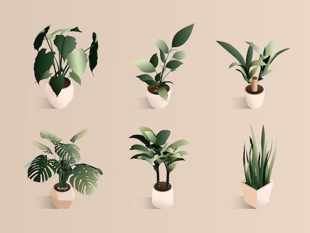 等尺性植物は、モダンなポットの小さなセットに設定します。新鮮な緑のハーブ。 Premiumベクター