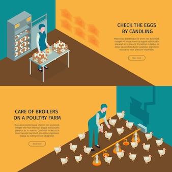 Набор горизонтальных баннеров изометрической птицефабрики с редактируемым текстом, кликабельным, кнопкой «читать дальше» и иллюстрацией персонажей рабочих