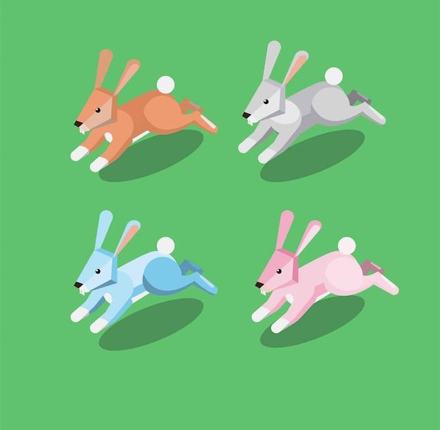 等尺性ウサギ実行イラスト