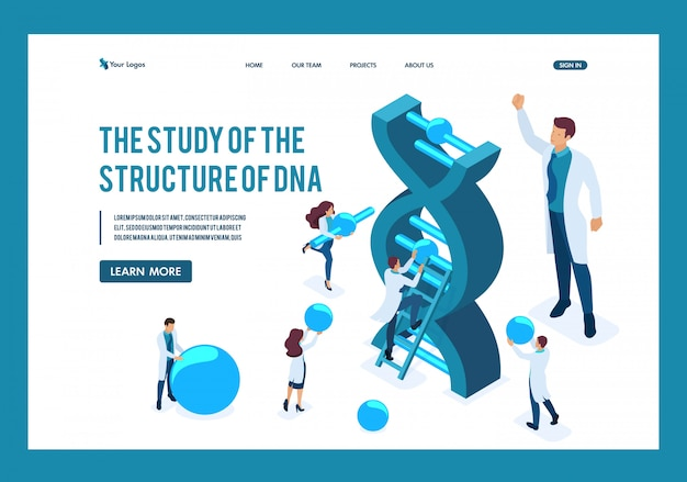 Isometric scientists are investigating the structure of dna, making experiments landing page