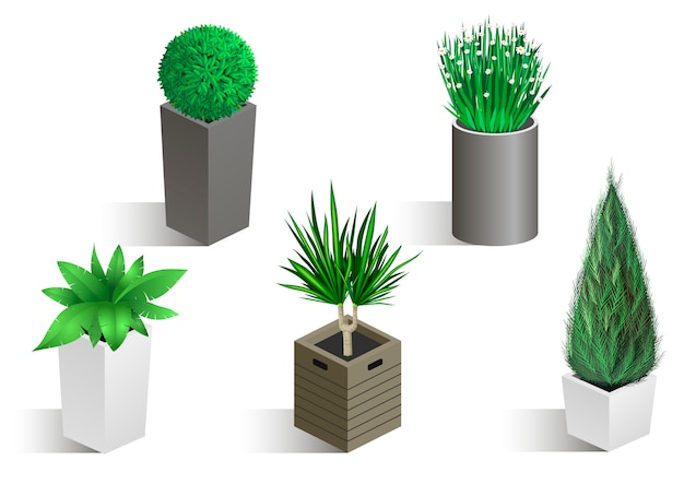 Isometric set of different plants