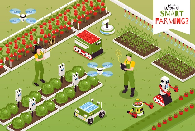 Isometric smart farm composition and human characters illustration