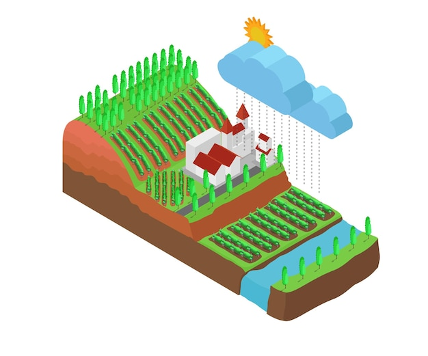 Isometric style illustration about grapes garden map on hillside