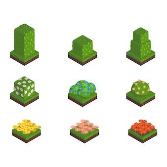 Isometric tree  illustration.
