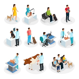 Isometric veterinary clinic set of people with their pets come to veterinarians for treatment isolated