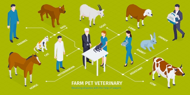 Isometric veterinary infographic with editable text captions characters of medical workers with masters pets and animals illustration