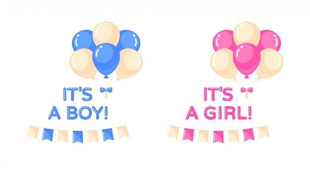 It's a girl, it's a boy set with balloons and flags. baby shower design element.  isolated illustration
