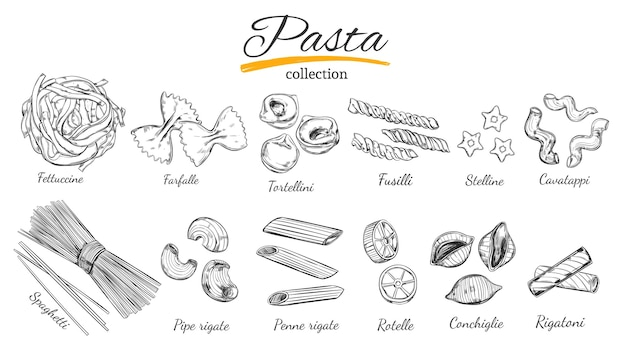 イタリアのパスタコレクション。さまざまな種類のパスタ。手描きイラスト