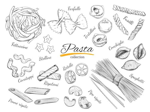 スケッチスタイルのイタリアンパスタ手描きイラスト。