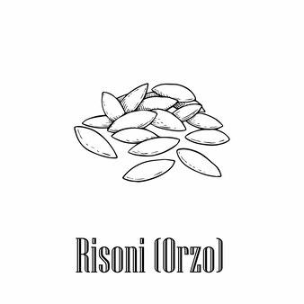 Итальянская паста ризони.