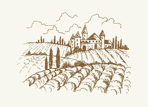 イタリアのブドウ園の風景。ヴィンテージの中世の家や庭、木やブドウの木のプランテーションのスケッチ。素朴な郊外、手描きの村のベクトルイラスト。イタリアの田舎の農場、風景の自然