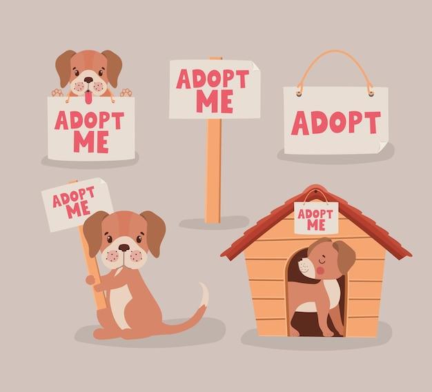 Предмет для усыновления щенков