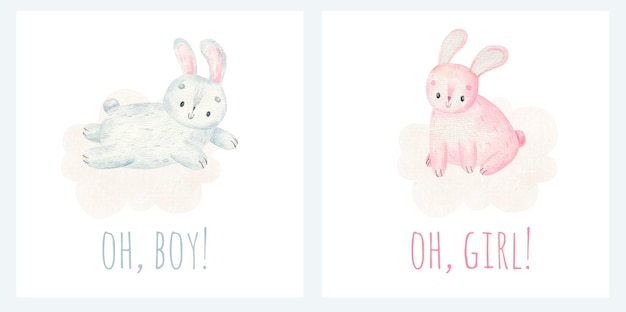 Its a boy and its a girl inscriptions cute bunnies on clouds baby childish design