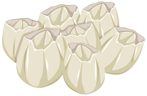 Ivoly barnacles в мультяшном стиле на белом фоне