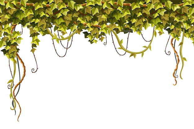 Ivy frame liana branches and tropical leaves