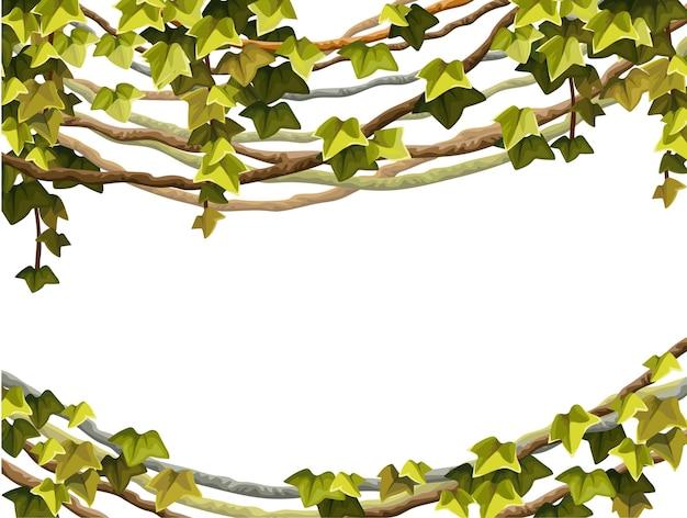 Cornice di edera rami di liana e foglie tropicali