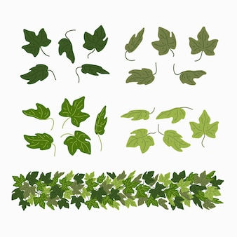 Ivy leaves and green liana border