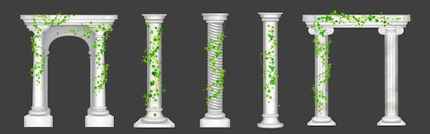 Ivy on marble columns and arches vines with green leaves climbing on antique stone pillars