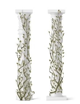 Плющ на мраморных лозах колонны с зелеными листьями