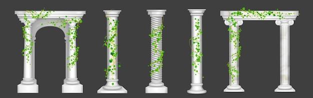 대리석 기둥과 아치형 덩굴에 담쟁이 덩굴과 녹색 잎이 골동품 돌 기둥에 올라 타