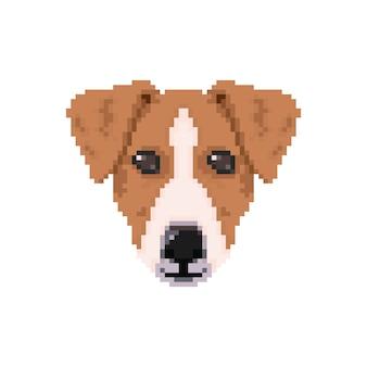 Jack russell dog head in pixel art style.
