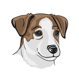 ジャックラッセルテリアの子犬の犬の肖像画