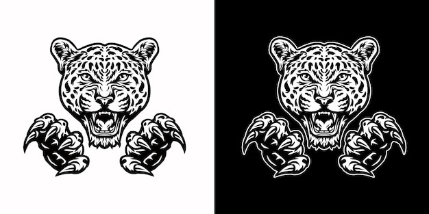 Jaguars and claws, isolated