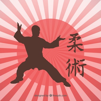 Japanese martial art kick silhouette