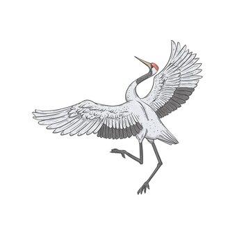 求愛で踊る和風の白い鳥