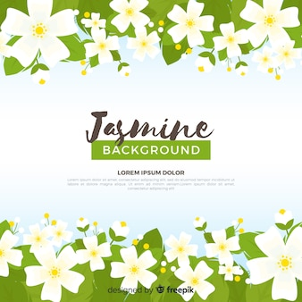 Jasmine background