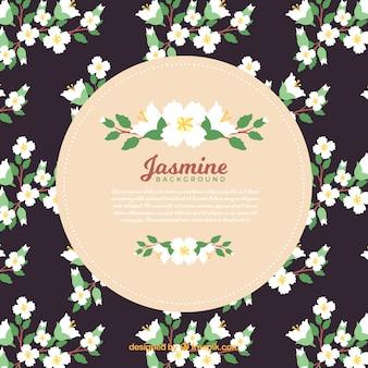 ジャスミンの装飾的な背景