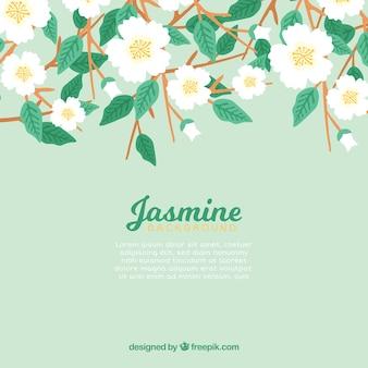 Цветочный фон жасмина