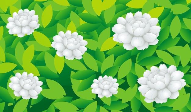 茂みの中のジャスミンの花