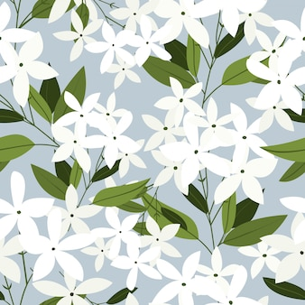 Jasmine flowers seamless pattern.