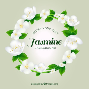 Jasmine wreath background
